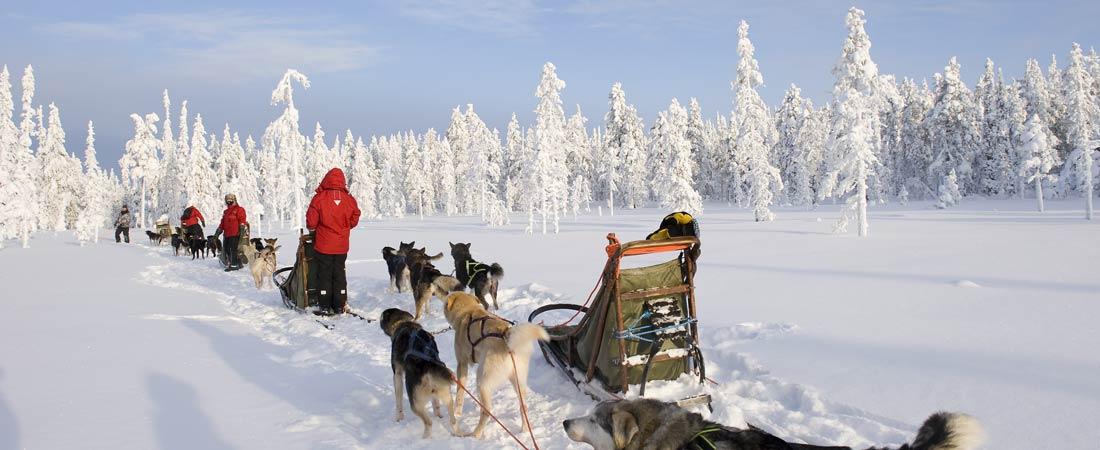 voyage en laponie pour noel 2018 séjour en Laponie : réveillon Noël Laponie, randonnée motoneige  voyage en laponie pour noel 2018